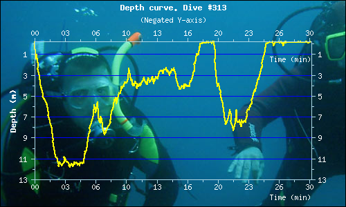 Dive Profile 4